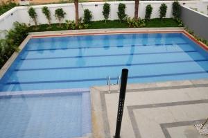 1-palmera-garden-pool-1